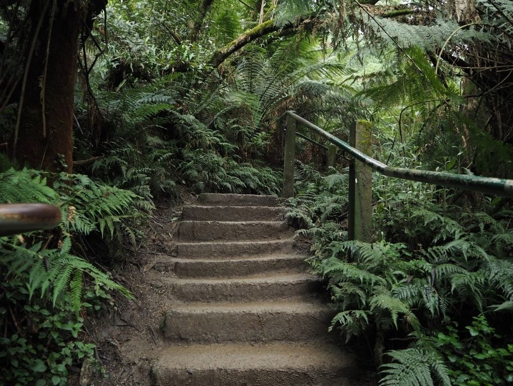 1000 steps Kokoda track memorial walk is a great team bonding experience for large groups